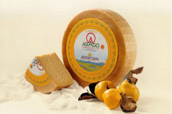 Asiago Cheese P.D.O.